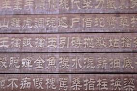 月額421円で本格的中国語学習映像を取得できるサービス