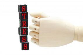 【ストレス解消法】筋トレ代替案の豆知識