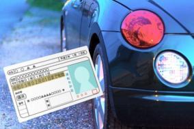 運転免許証の精巧な「オマージュ免許証」を作ってみた