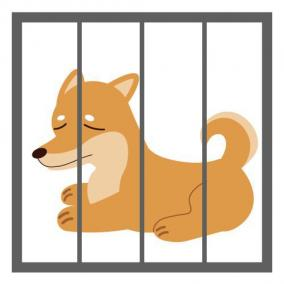 クリニック 預かってから1週間後に亡くなった犬の損害賠償について相談したい